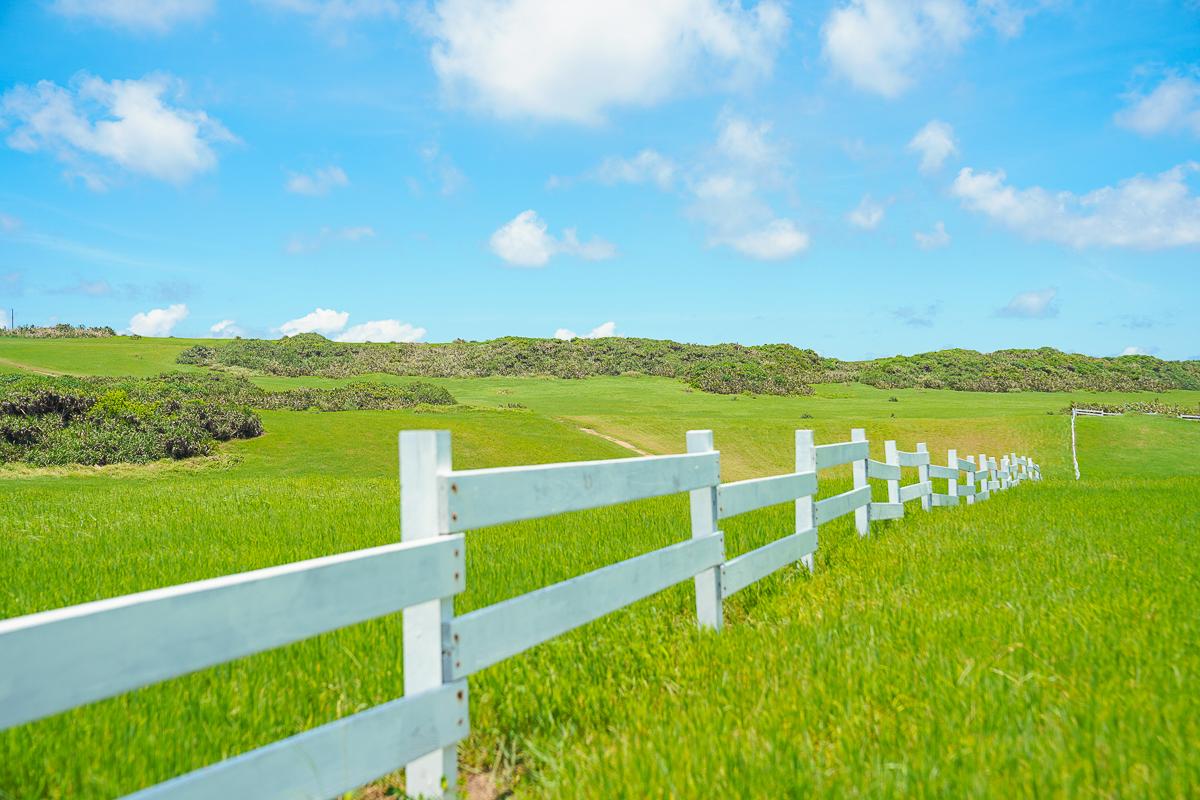 [墾丁景點]水蛙窟大草原-美如電腦桌布的綠草藍天景色!隱藏版墾丁打卡景點 @美食好芃友