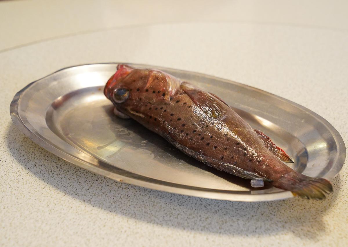 [墾丁]田中漁夫-最強墾丁海鮮餐廳!必點黑松露干貝燉飯x鐵板鮮蚵 @美食好芃友