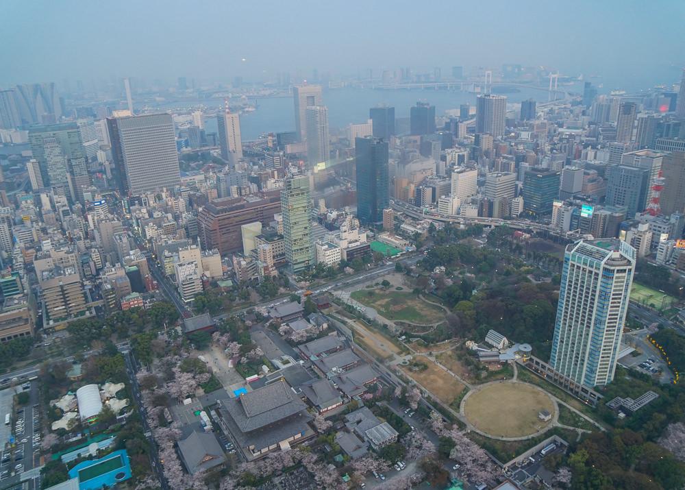 [東京夜景推薦]東京鐵塔-東京必看夜景!2018年2~5月限定3D夜櫻燈光秀 @美食好芃友