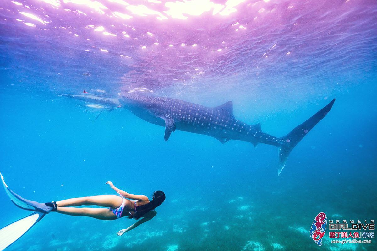 [墾丁自由潛水]墾丁美人魚學校-優雅潛進藍色大海!女生必來自由潛水體驗x超專業水中攝影 @美食好芃友