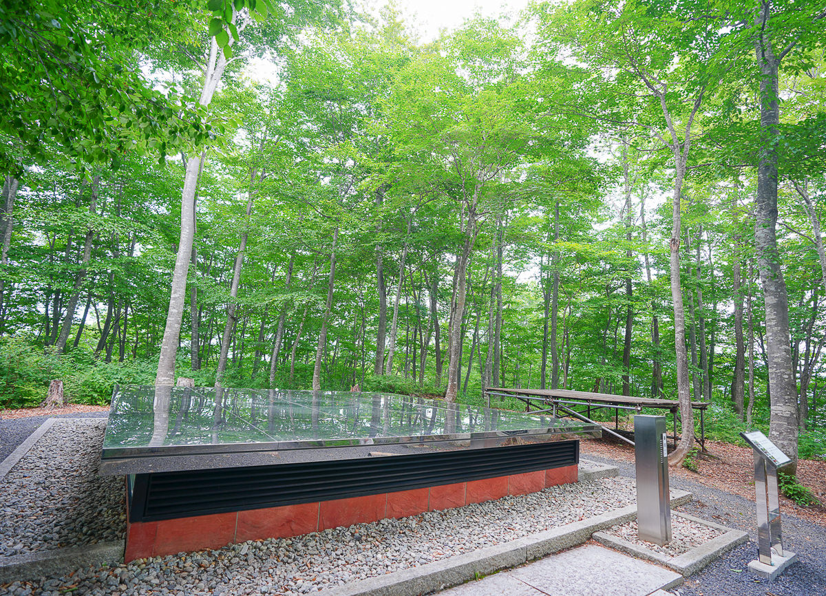 [山形景點]空氣神社-空氣也能拜!?森林的隱藏版神社~廣告拍攝景點 @美食好芃友