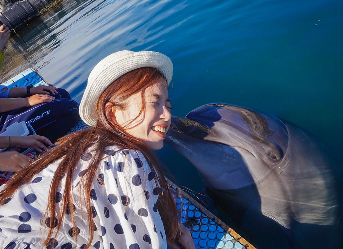 [愛媛景點推薦]Dolphin Farm Shimanami-與海豚近距離接觸!親親抱抱都來~ @美食好芃友