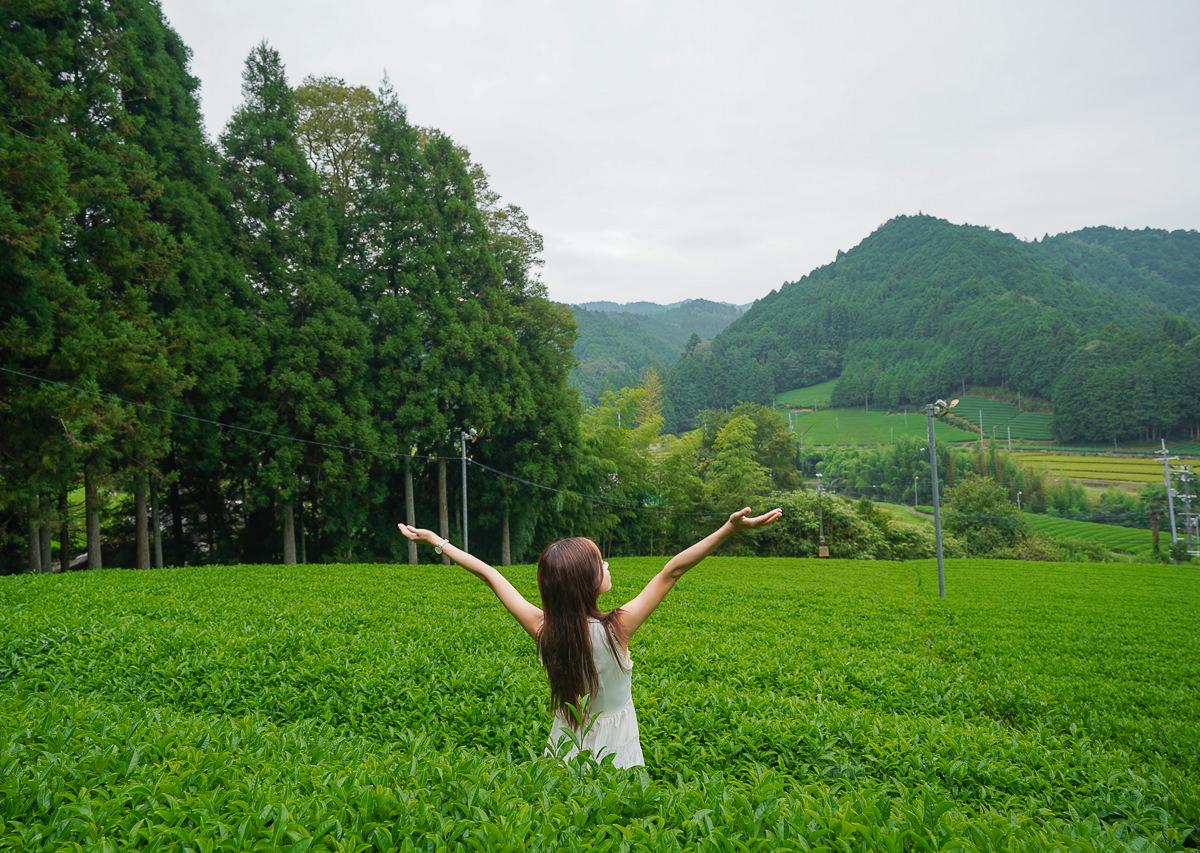 [京都景點]京都和束町-京抹茶盛產地!絕景茶梯田&從產地到餐桌的品茶體驗 @美食好芃友