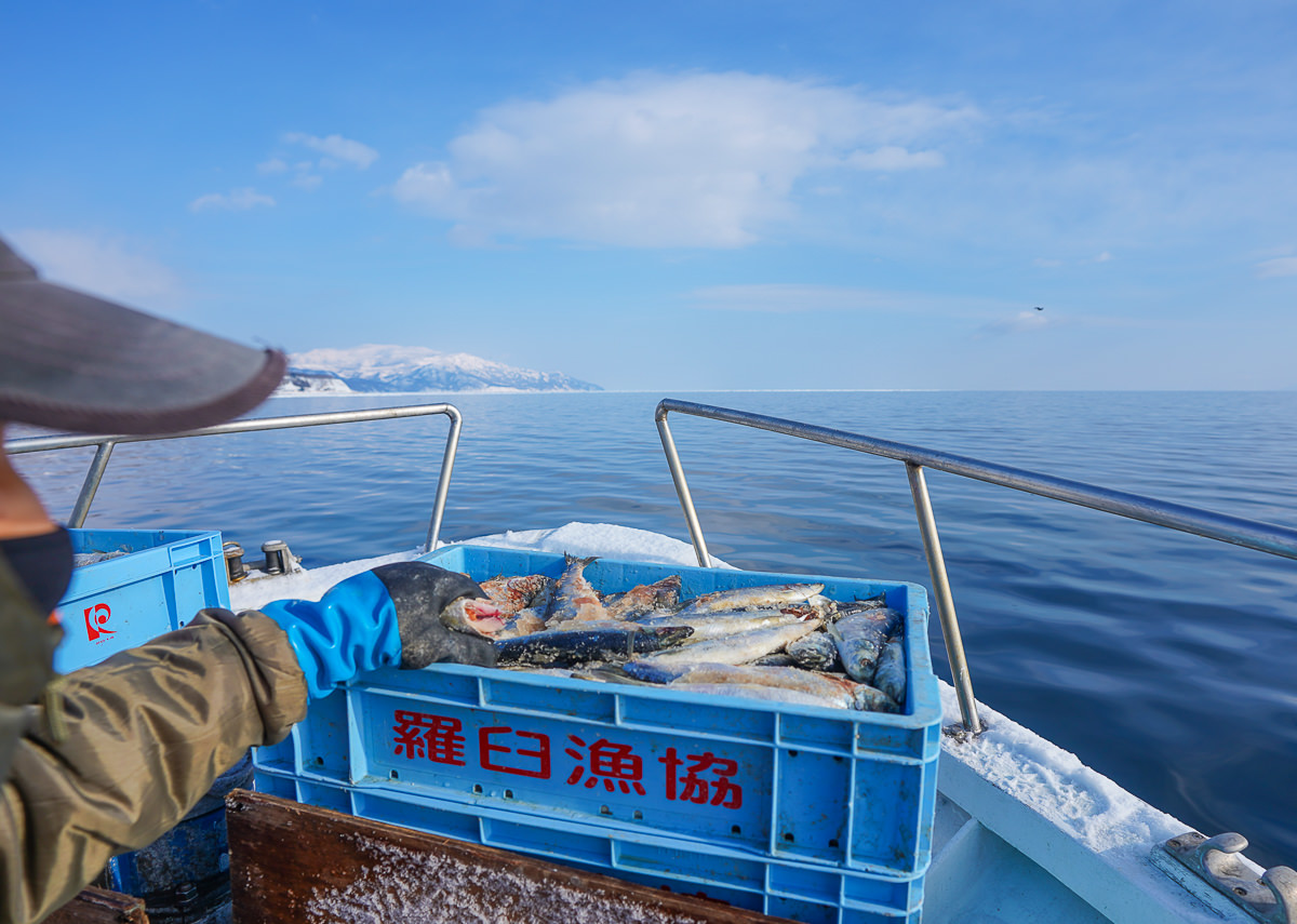 [北海道道東]知床流冰船賞流冰之旅-北海道冬天限定白色海上絕景(含流冰船預約) @美食好芃友